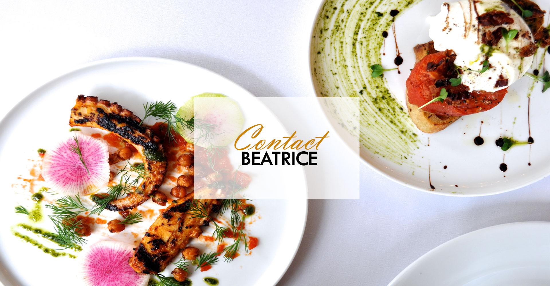 Contact Beatrice Contact 9s En