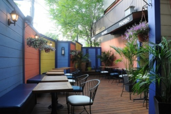 Best Toronto Restaurants for backyard patios\'s frontpage image