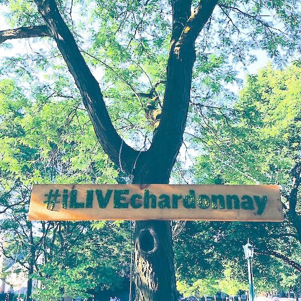 Perfect Weekends: Chardonnay Country\'s photo