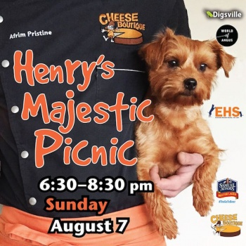 Latest food article: Henry's Majestic Picnic – Chefs and their dogs for a good cause